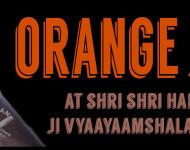 Orange-Jori-Slider