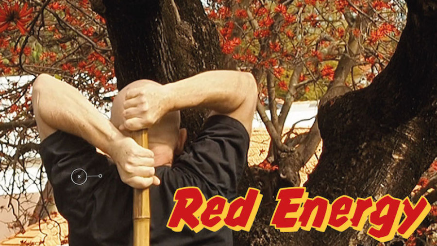 Red Energy Triceps Extensions